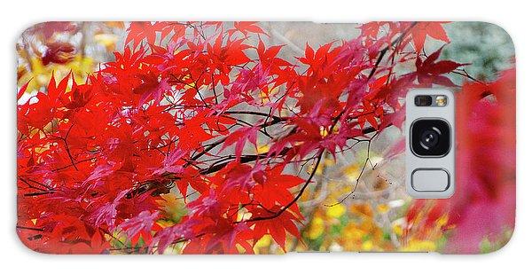 Brilliant Fall Color Galaxy Case
