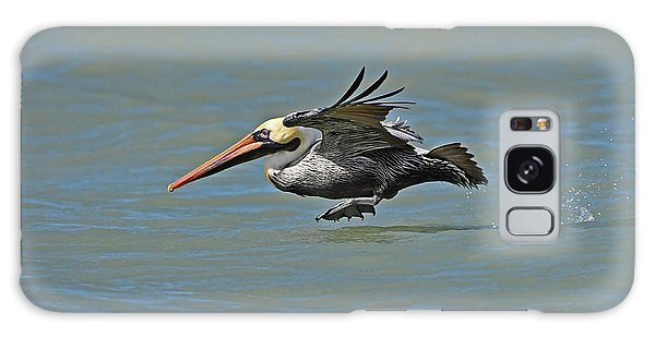 Galaxy Case featuring the photograph Brown Pelican Gliding by Ken Stampfer