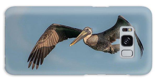 Brown Pelican In Flight Galaxy Case