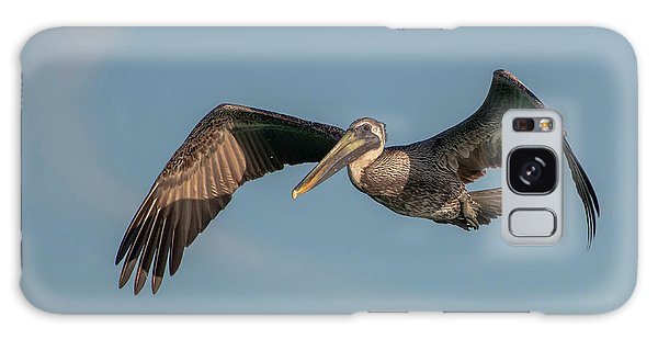 Galaxy Case featuring the photograph Brown Pelican In Flight by Ken Stampfer