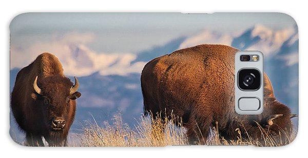 Buffalo Grazing At Dawn Galaxy Case