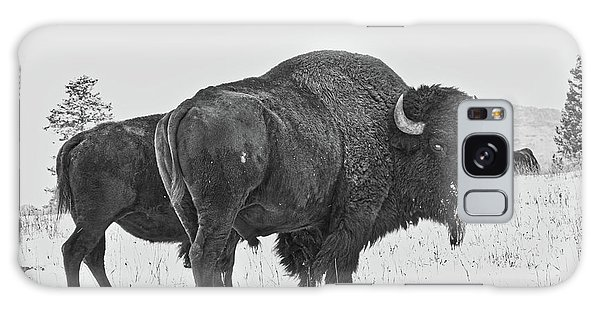 Buffalo In The Snow Galaxy Case