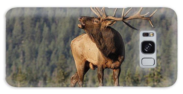 Attraction Galaxy Case - Bull Elk by David Osborn