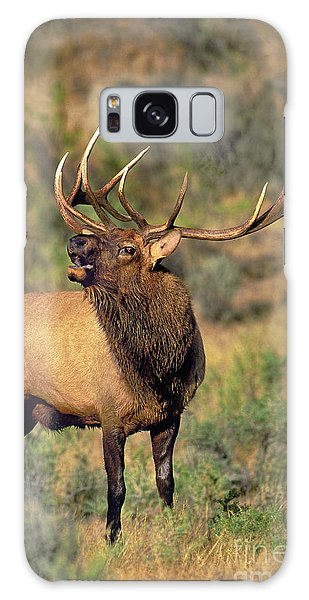 Bull Elk In Rut Bugling Yellowstone Wyoming Wildlife Galaxy Case