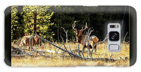 Bull Elk Galaxy Case