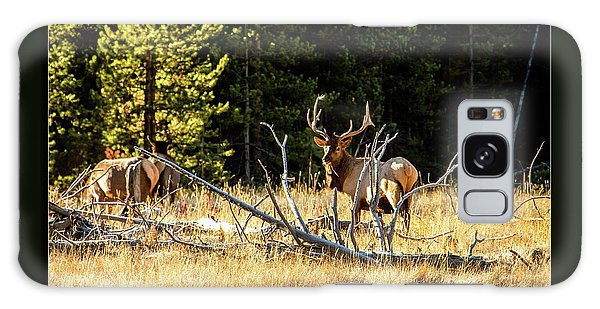 Bull Elk Galaxy Case