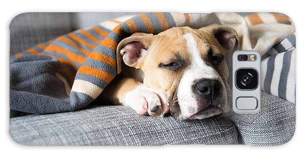Patient Galaxy Case - Bulldog Mix Puppy Sleeping On Gray Sofa by Anna Hoychuk