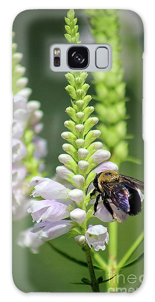 Bumblebee On Obedient Flower Galaxy Case