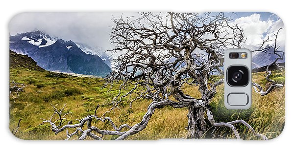 Burnt Tree, Torres Del Paine, Chile Galaxy Case