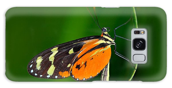Perches Galaxy Case - Butterfly Heliconius Hacale Zuleikas by Ondrej Prosicky