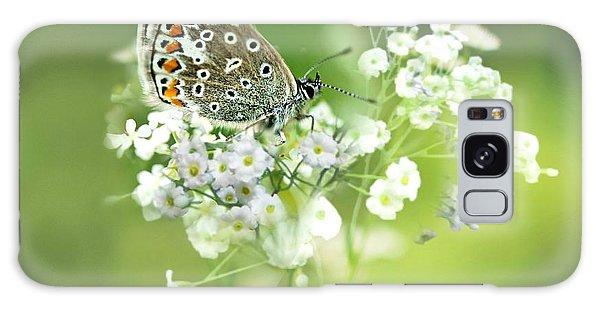 Butterfly On Babybreath Galaxy Case
