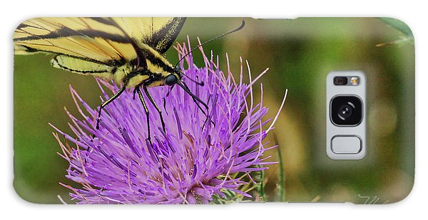 Butterfly On Bull Thistle Galaxy Case
