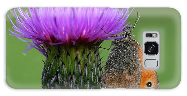 Natural Galaxy Case - Butterfly On Thistle by Miroslav Hlavko