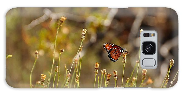 Natural Galaxy Case - Butterfly On Wildflower In Joshua Tree by Bjul