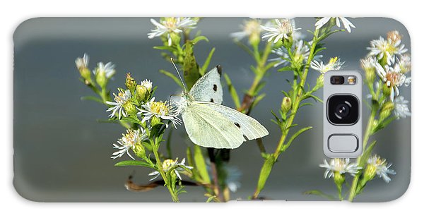 Cabbage White Butterfly On Flowers Galaxy Case