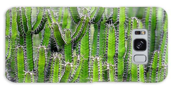 Cacti Wall Galaxy Case