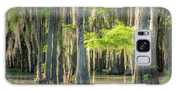 Caddo Swamp 1 Galaxy Case