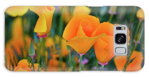 California Poppies Lake Elsinore Galaxy Case
