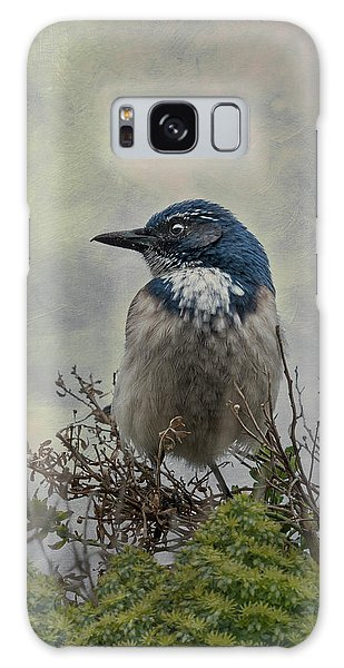 California Scrub Jay - Vertical Galaxy Case