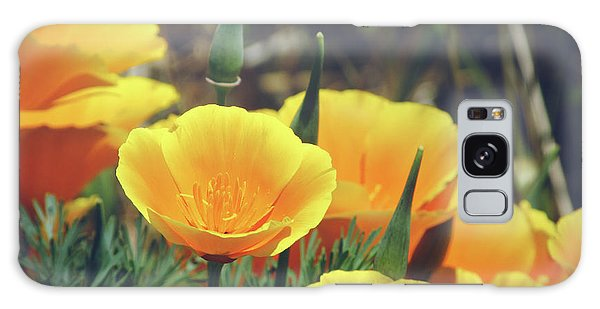 Californian Poppies In The Patagonia Galaxy Case