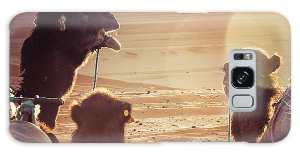 Caravan Galaxy Case - Camels In The Desert During A Rest by Luisa Puccini