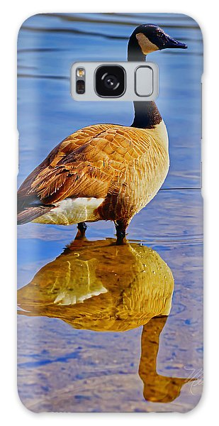 Canadian Goose Galaxy Case