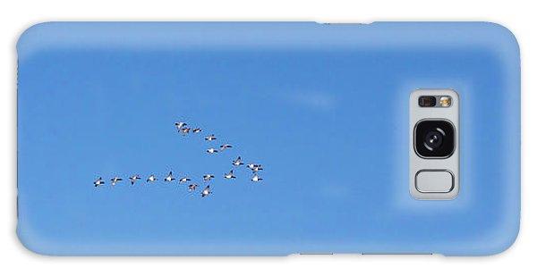 Canvasback Ducks Galaxy Case