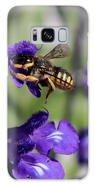 Carder Bee On Salvia Galaxy Case