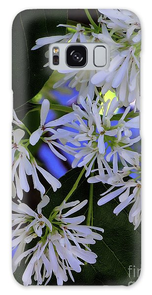 Carly's Tree - The Delicate Grow Strong Galaxy Case