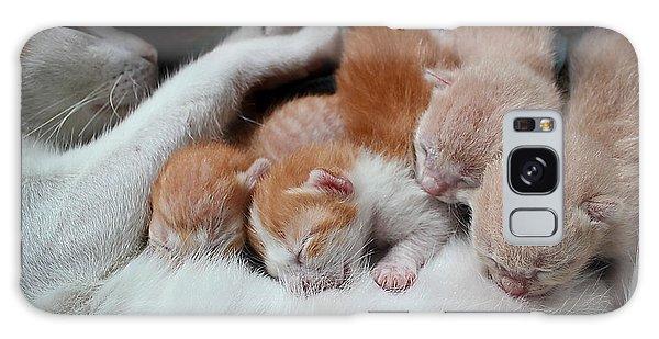 Furry Galaxy Case - Cat Nursing Her Kittens by Grey Carnation