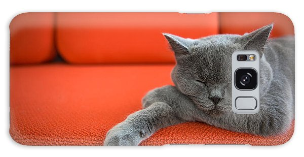 Furry Galaxy Case - Cat Relaxing On The Couch by Ac Manley