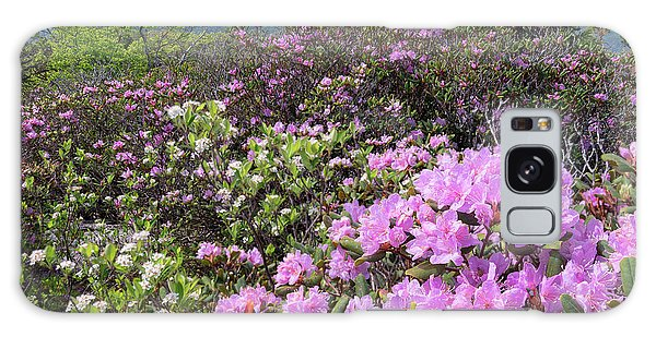 Catawba Rhododendron Table Rock  Galaxy Case