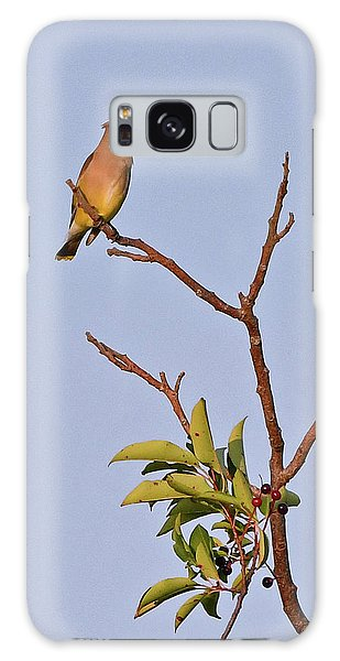 Galaxy Case featuring the photograph Cedar Waxwing by Ken Stampfer