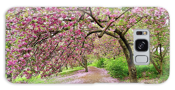 Central Park Cherry Blossoms Galaxy Case