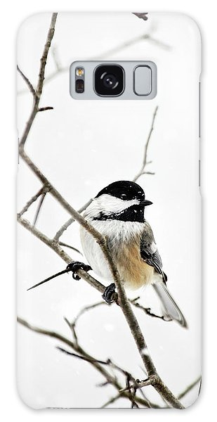 Charming Winter Chickadee Galaxy Case