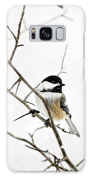 Charming Winter Chickadee Galaxy Case