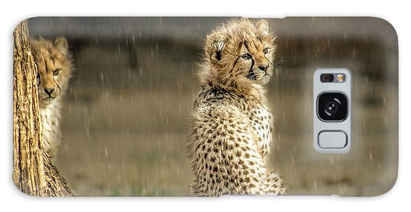 Galaxy Case featuring the photograph Cheetah Cubs And Rain 0168 by Donald Brown