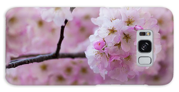 Cherry Blossom 8624 Galaxy Case