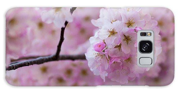 Cherry Blossom 8624 Galaxy Case
