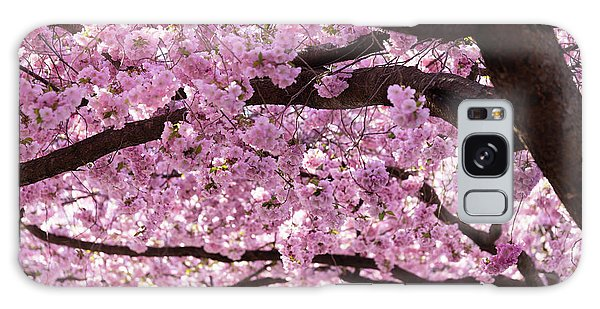 Blossoms Galaxy Case - Cherry Blossom Trees by Nicklas Gustafsson