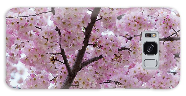 Cherry Blossoms 8611 Galaxy Case