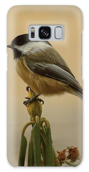 Chickadee On Rhododendron Galaxy Case