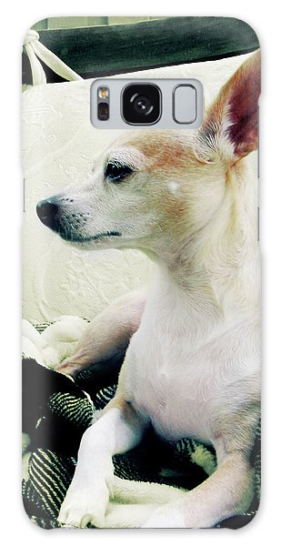 Chihuahua  Portrait  Galaxy Case