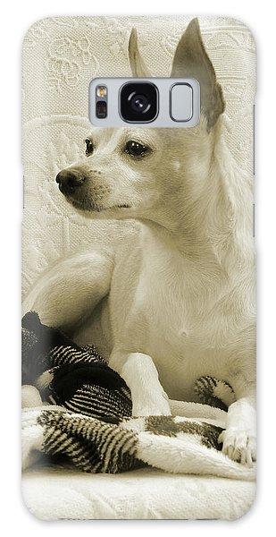 Chihuahua Chiqui  Portrait  Galaxy Case