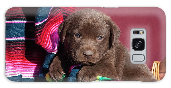 Chocolate Lab Galaxy Case - Chocolate Labrador Retriever Puppy by Zandria Muench Beraldo