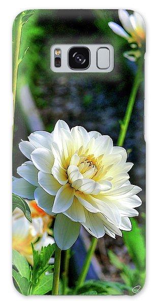 Chrysanthemum In Bloom Galaxy Case