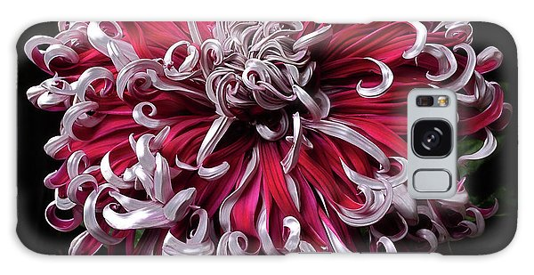 Galaxy Case featuring the photograph Chrysanthemum 'lilli Gallon' by Ann Jacobson