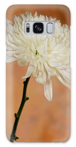 Chrysanthemum On Canvas Galaxy Case