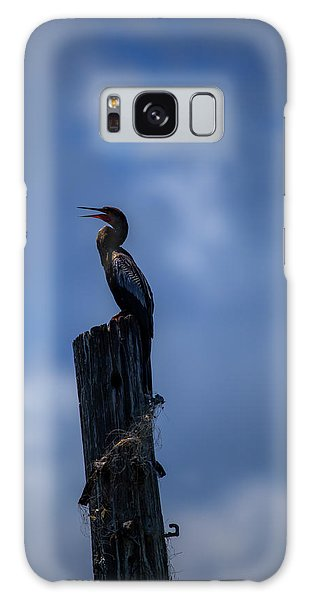 Cinematic Looking Anhinga Galaxy Case