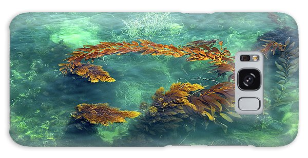 Circle Of Glistening Seaweed Galaxy Case